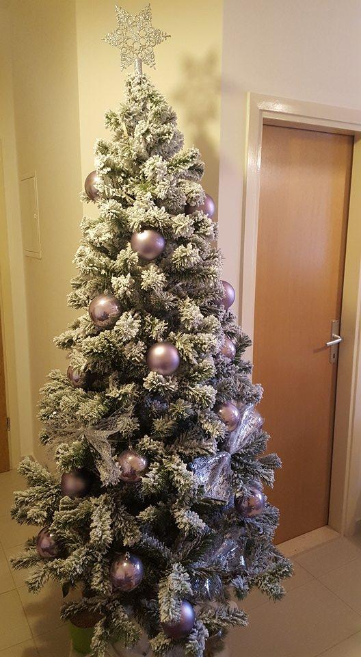 umjetni bor eliza snježna